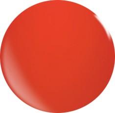 Farbgel N010/22ml