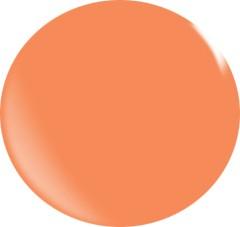 Farb gel N093/ 22 ml