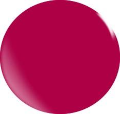 Farbgel N049/ 22 ml
