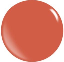 Farbgel N096/ 22 ml