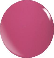 Farbgel N011/22 ml