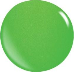 Color Acryl Powder N031/56 gr.