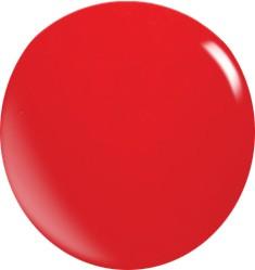 Farbgel N062/ 22 ml