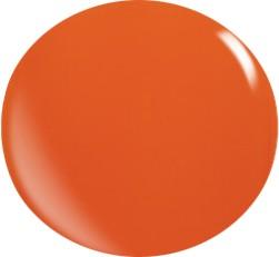 Farbgel N040/ 22 ml