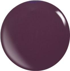 Farbgel N067/ 22 ml