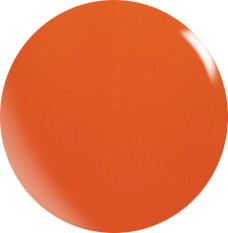 Farbgel N073/ 22 ml