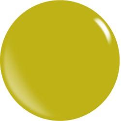 Farbgel N118/ 22 ml