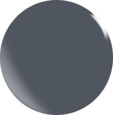 Farbgel N100/ 22 ml